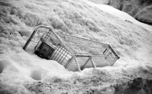 shopping-cart-in-snow